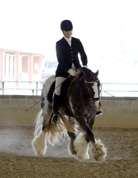 Indigo's Royal Knight adn Heather Caudill