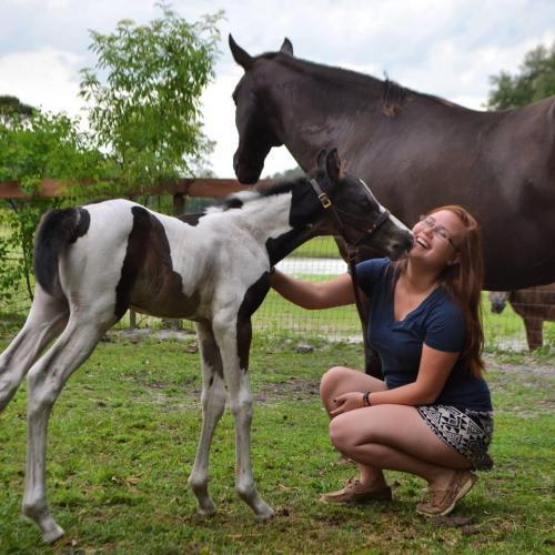 Katie Bigge and Benson Foal